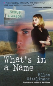 2008 Edition Cover of WHAT'S IN A NAME by Ellen Wittlinger